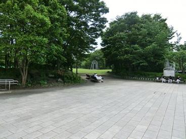有明テニスの森公園の画像1