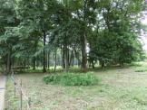 長作市民の森