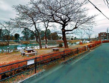 河川敷 那珂川(横手)の画像1