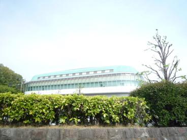北総合体育館の画像2
