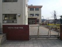 今福小学校