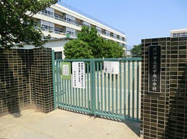 川口市立芝中央小学校の画像1