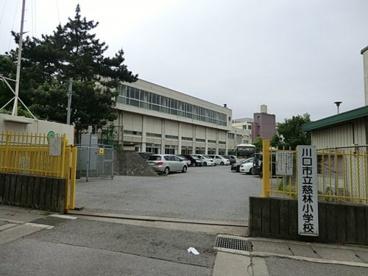 川口市立慈林小学校の画像1