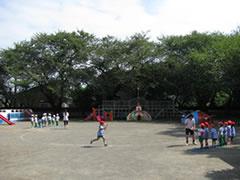 市原うさぎ幼稚園の画像2