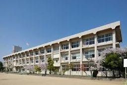 新宿区立柏木小学校の画像