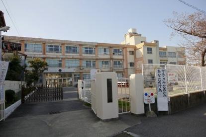 野崎小学校の画像1