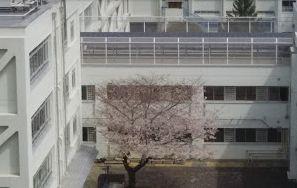 東戸山小学校の画像