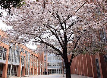 私立東亜学園高校の画像1
