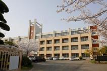岩出中学校