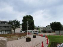 若葉高津保育園