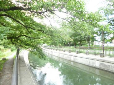 東山自然緑地の画像1