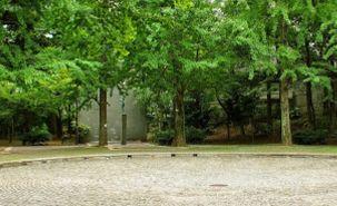 まつ川公園の画像