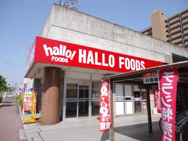 ハローフーヅ・天白店の画像1