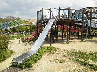天白公園の画像1