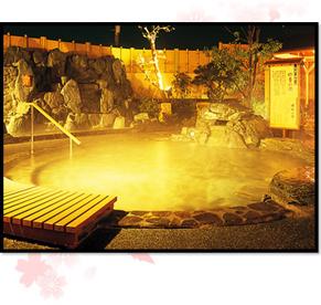 市原温泉 湯楽の里の画像2
