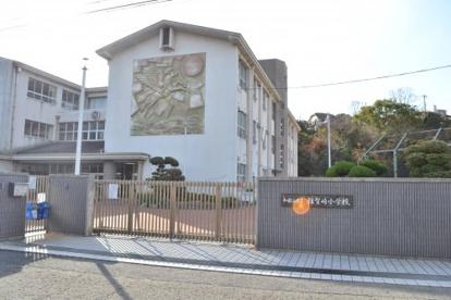 雑賀崎小学校の画像2