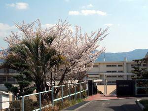 川原小学校の画像1