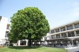 橋本中央中学校