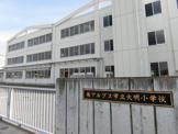 大明小学校