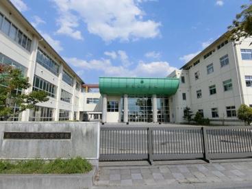 若草南小学校の画像1