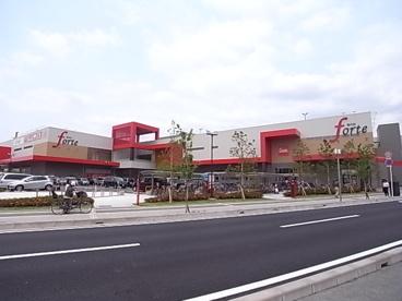 フォルテ津田沼店の画像1