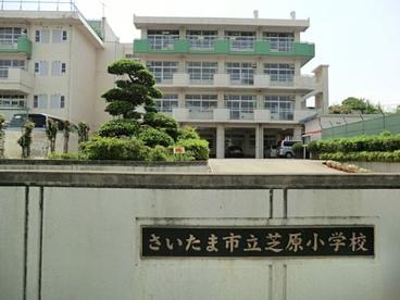 さいたま市立芝原小学校の画像1