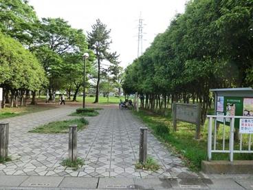 三ツ和公園の画像1