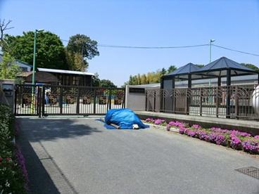 市立戸塚しらぎく保育園の画像1