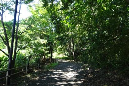 みなみ野の丘公園の画像1