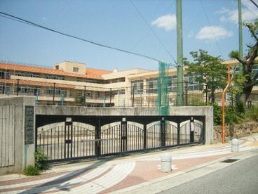 市立大社小学校の画像1