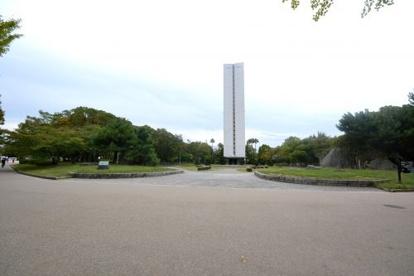 大仙公園の画像2