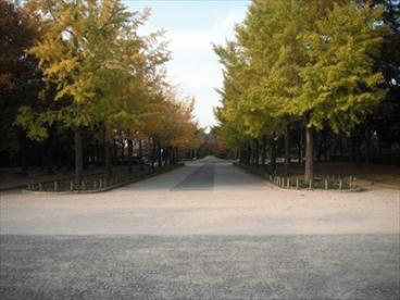 大仙公園の画像3
