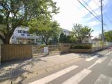 松戸市立 南部小学校