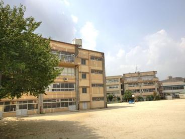 松戸市立 柿ノ木台小学校の画像1