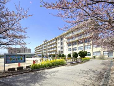 松戸市立 横須賀小学校の画像1