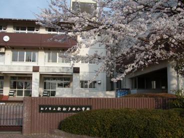 松戸市立 新松戸西小学校の画像1