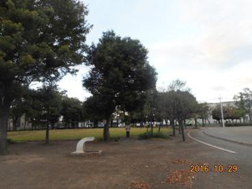 柴崎公園の画像1