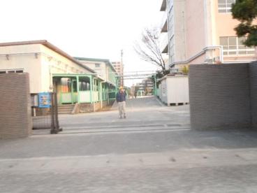 市川市市立大野小学校の画像1