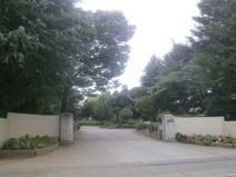 藤沢中学校