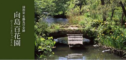 向島百花園の画像1