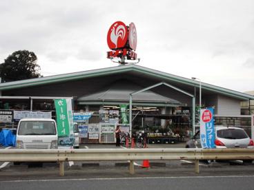 コメリハード&グリーン川本店の画像1