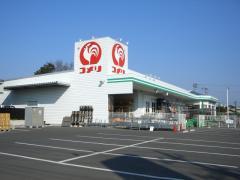 コメリハード&グリーン埼玉花園店の画像1