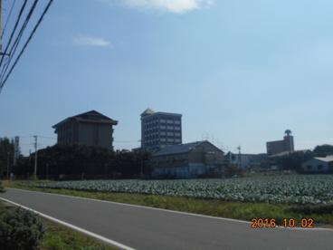 埼玉工業大学の画像2