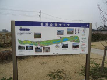 青淵公園の画像1