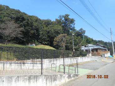 ふきのとう保育園の画像1