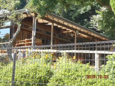 ふきのとう保育園の画像2