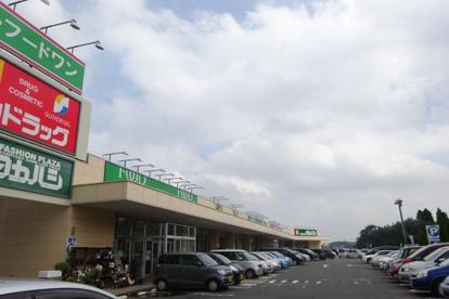 フードワン片倉店の画像3