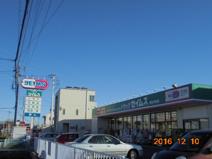 ドラッグセイムス熊谷中央薬局店