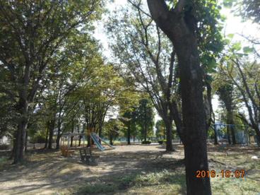 南公園の画像1