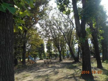 南公園の画像2